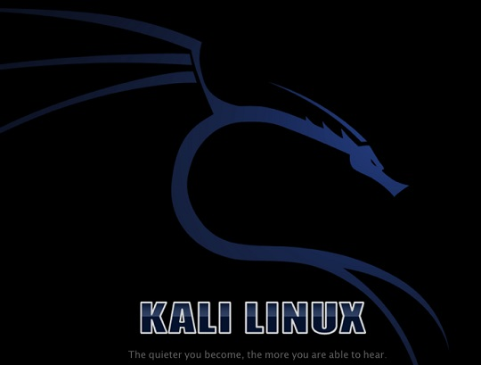 updating kali linux in vmware